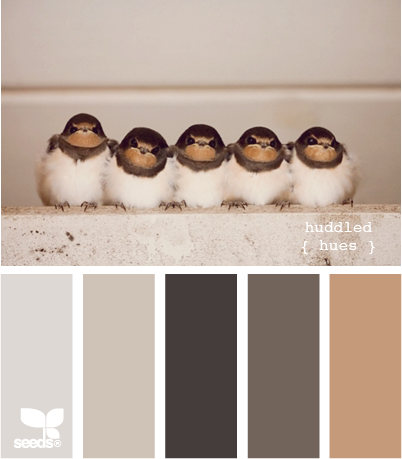 Color scheme grey and beige eclectic living home - Grey and brown colour scheme ...