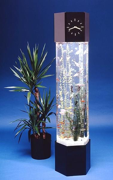 Atypical Aquariums   ECLECTIC LIVING HOME