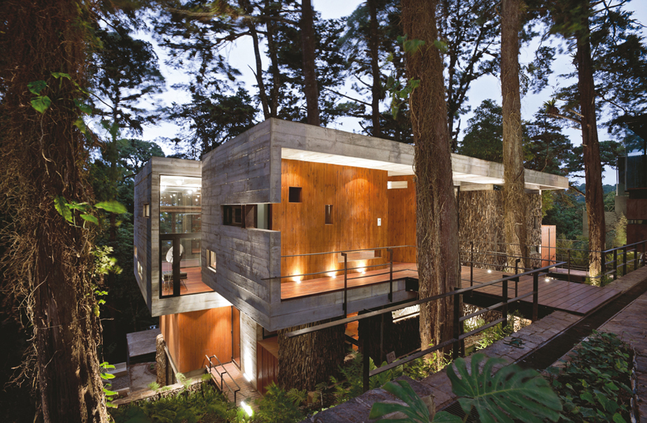 Architecture Forest Eclectic Living Home