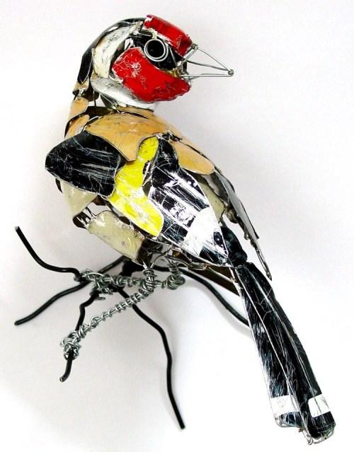 Leeds - Goldfinch